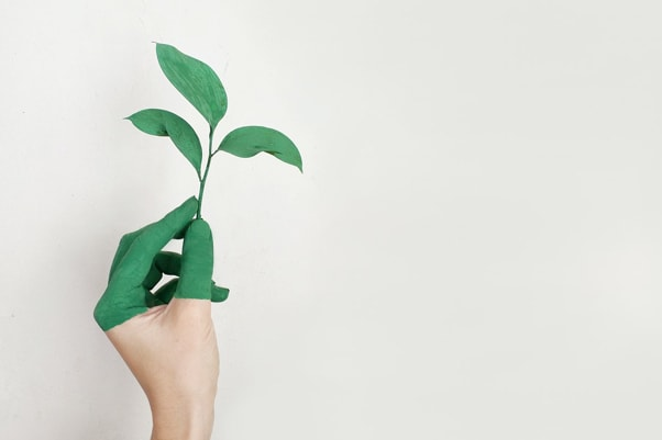 What Are Sustainable Practices For Allied Health Businesses